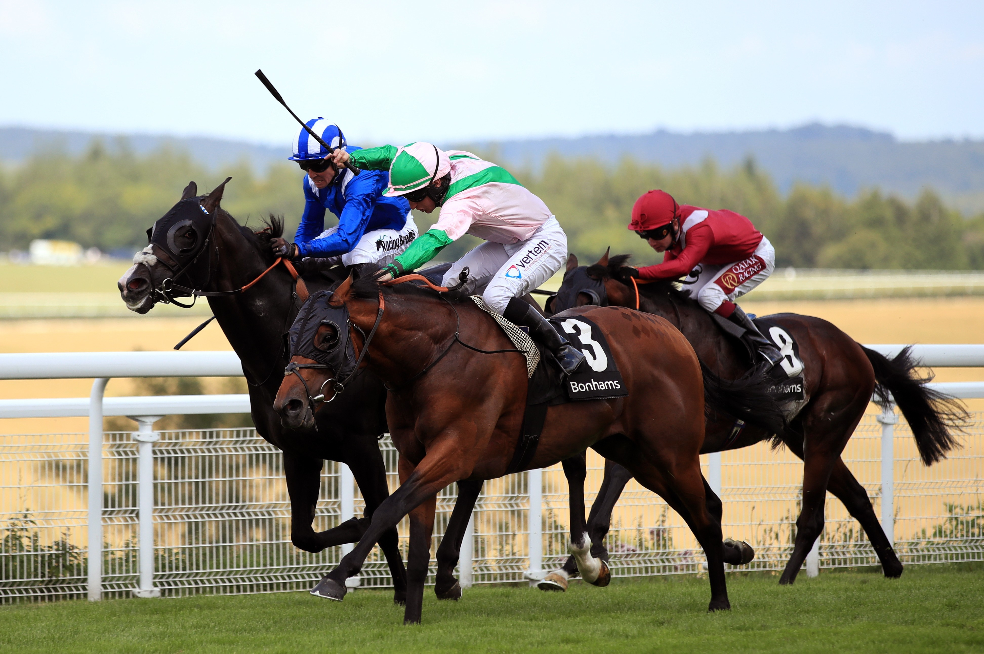 THOROUGHBRED STAKES (GR3) - Duke of Hazzard remporte le combat des œillères