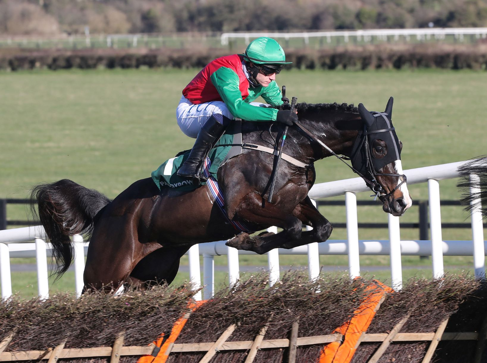 Paddy Power Betting Shop Novice Hurdle (Gr2) : Echoes in Rain surclasse l'opposition