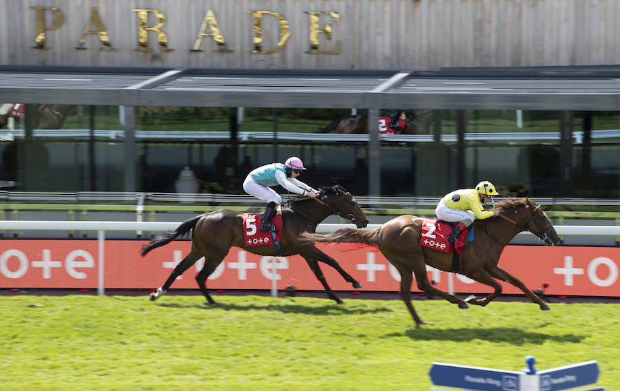 Dee Stakes (L) : El Drama gagne son trial pour le (French) Derby