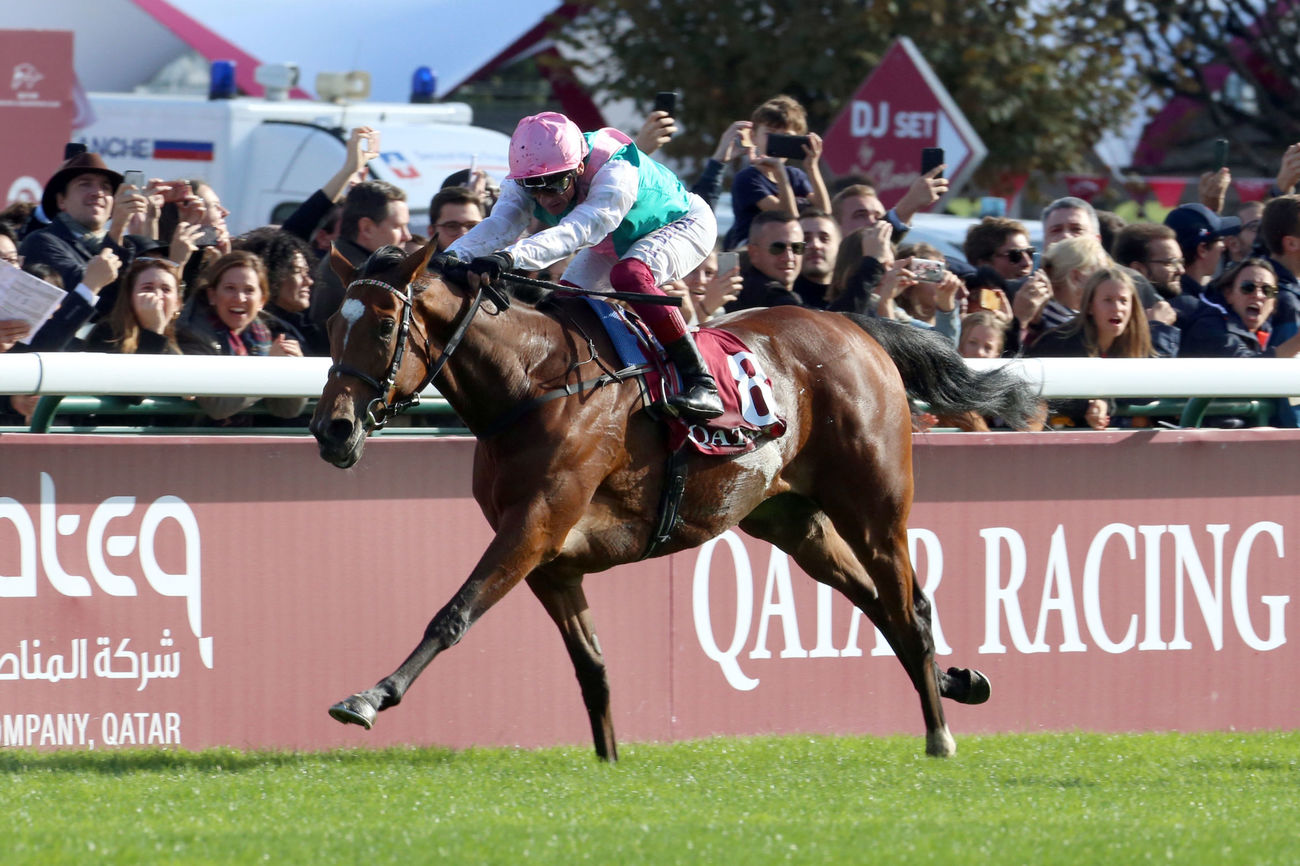 Eclipse Stakes (Gr1) : Enable, entre prudence et envie de gagner