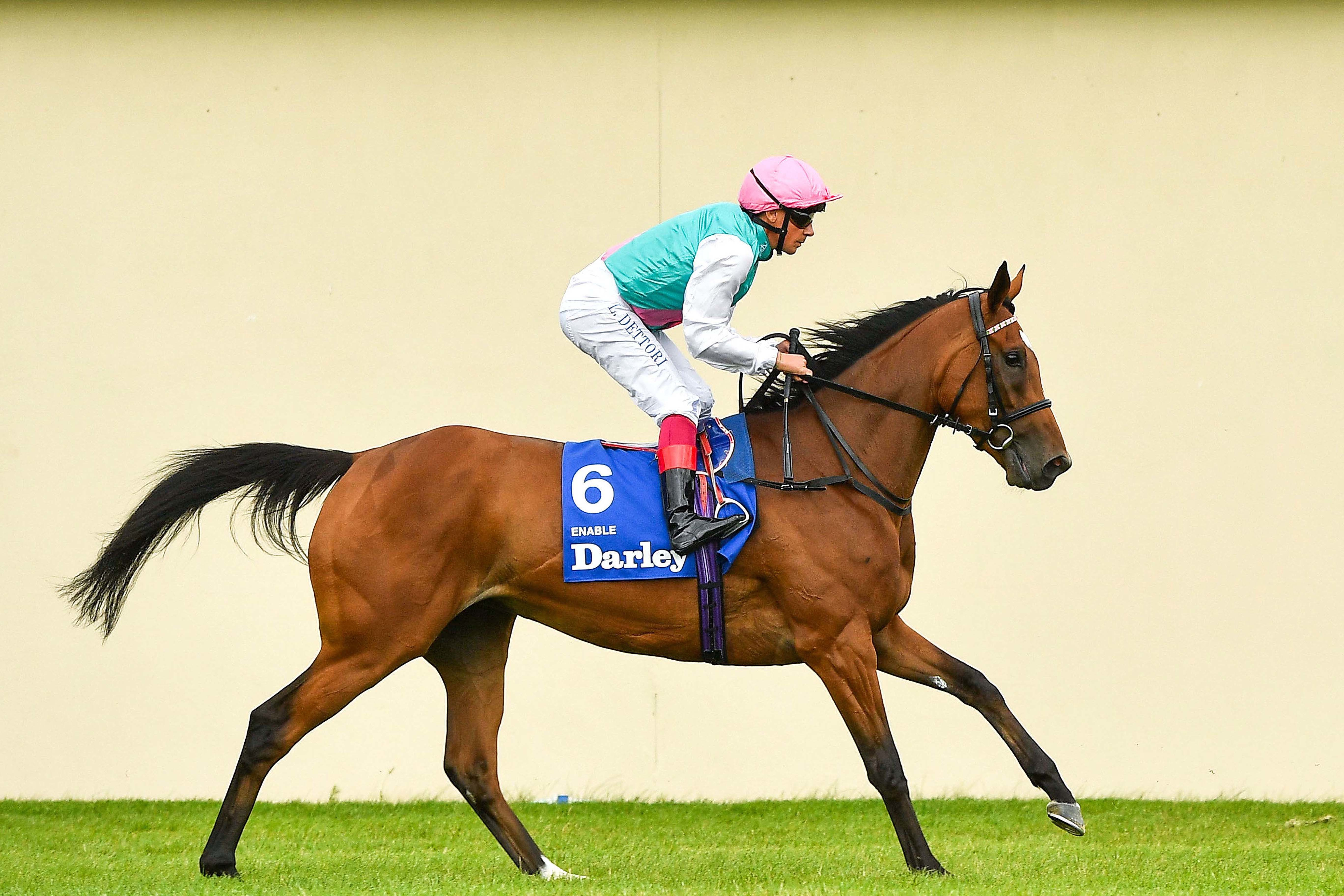 Enable face à Saxon Warrior et Roaring Lion à York ?