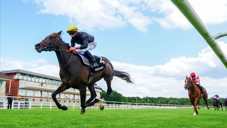 The Derby (Gr1) : English King à l'aveugle