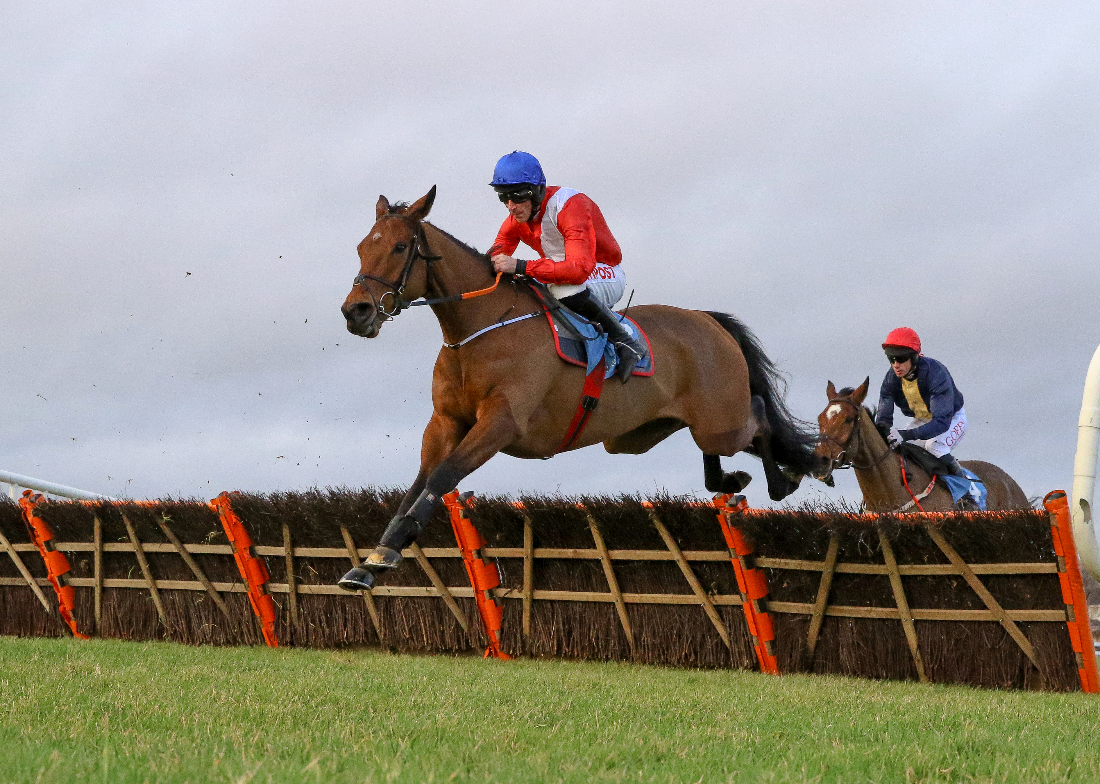 LAWLOR'S OF NAAS NOVICE HURDLE (GR1) - Envoi Allen poursuit sa grande destinée victorieuse