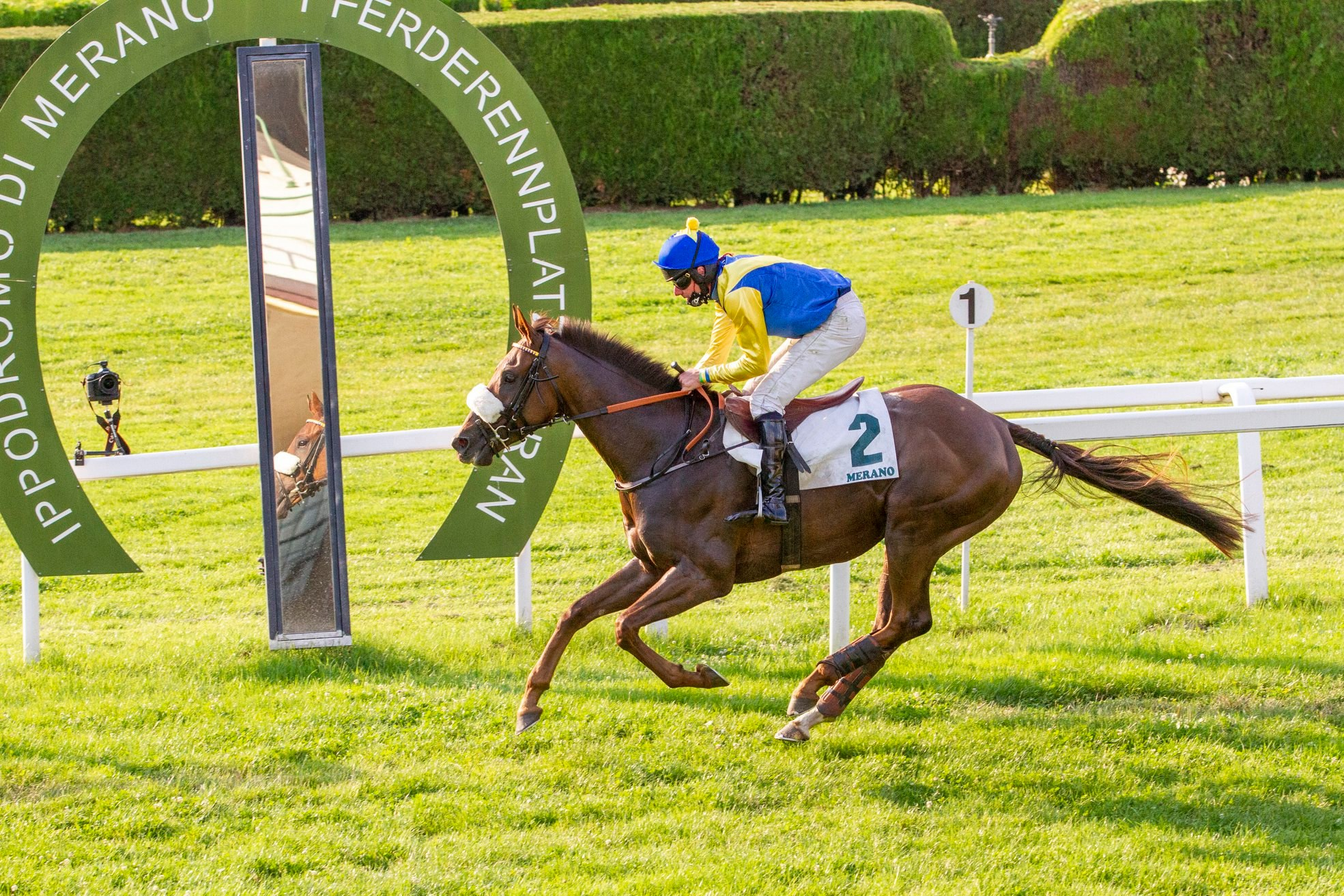 Premio Steeple-Chases d'Italia - Memorial Mario Argenton (Gr2) : First of All, seul au monde