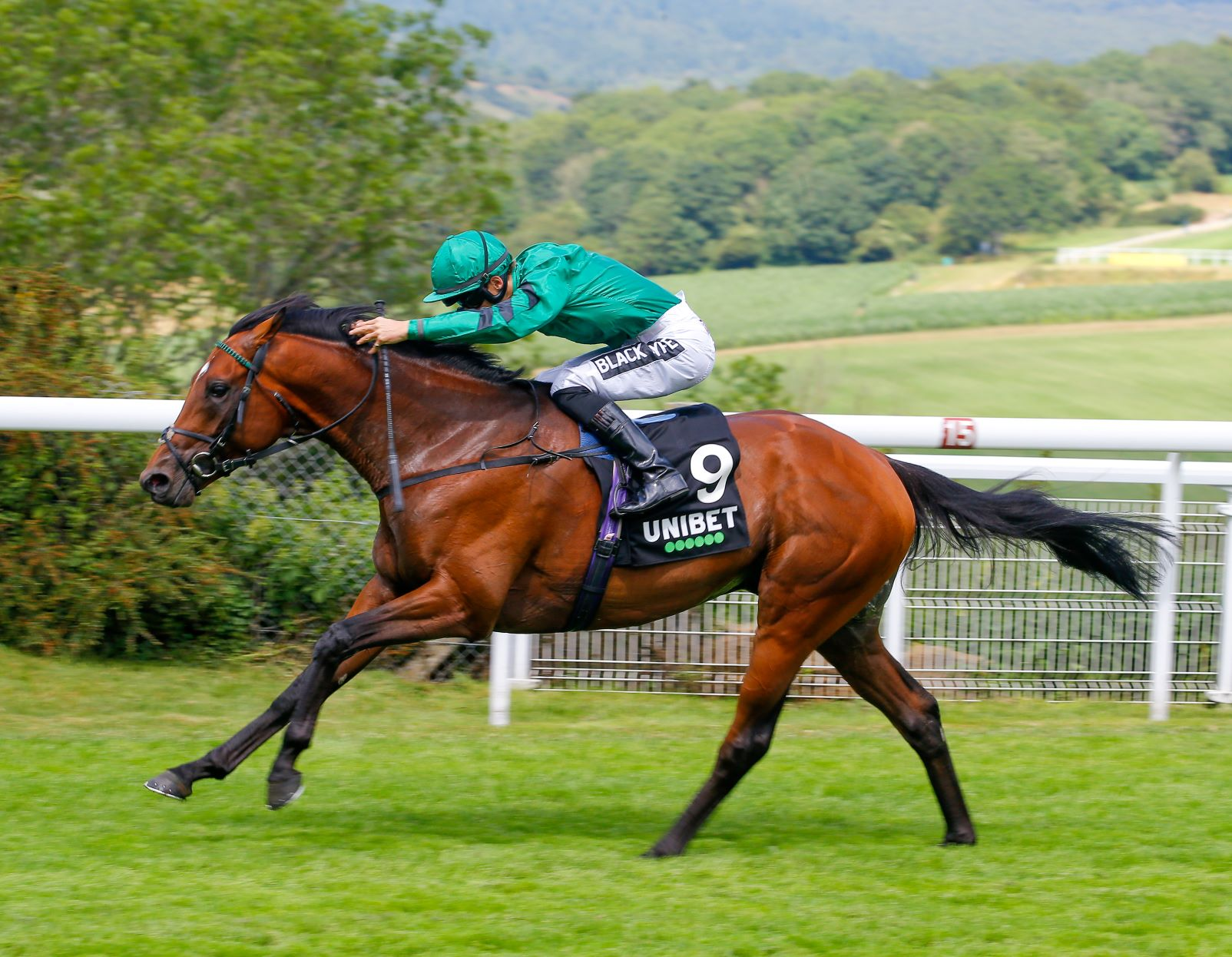 Winter Derby (Gr3) : Forest of Dean, le Gosden d'hiver
