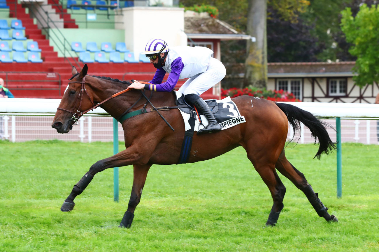 Prix Bay Archer (Haies) : Full Time, en bonne pouliche