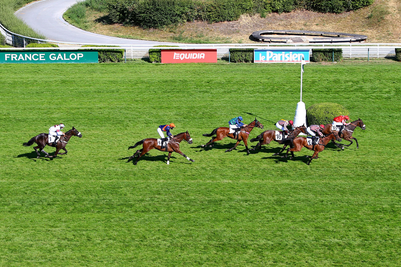 Prix Maguelonne (Steeple-Chase) : Gentilhomme peut rêver au Maurice Gillois