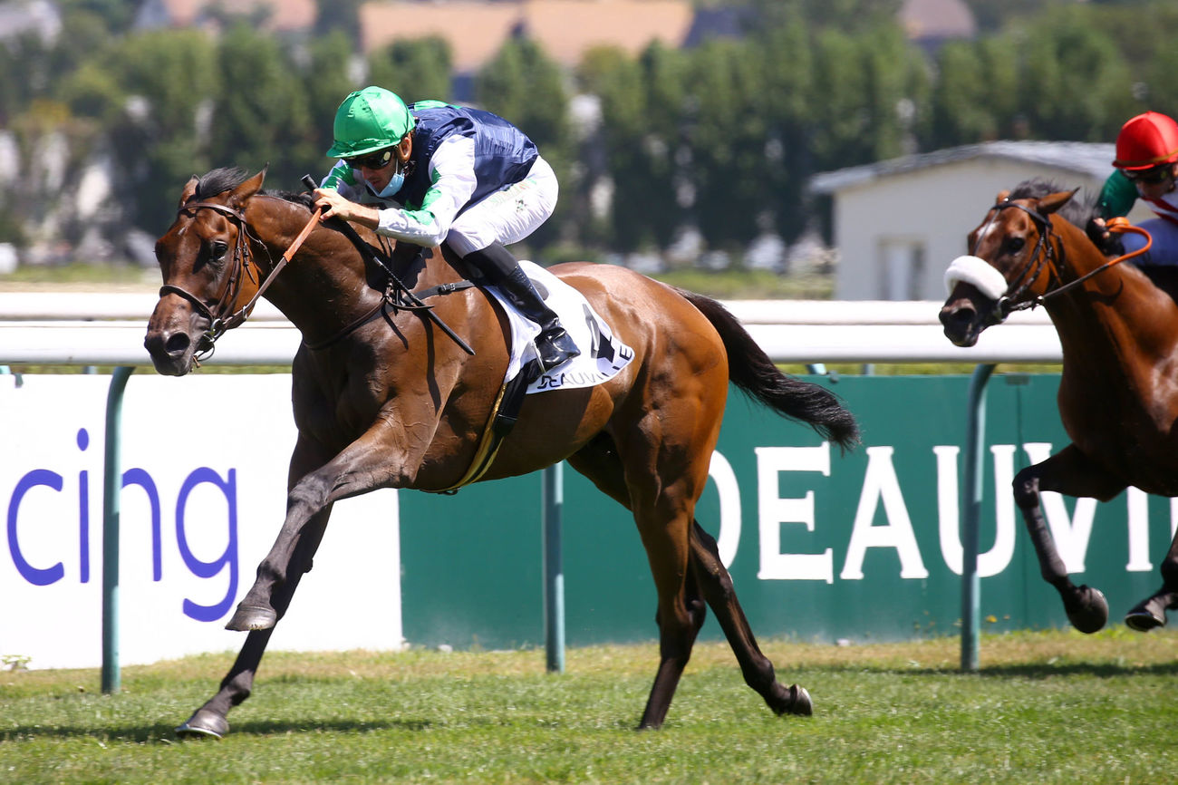 Prix du Carrousel (L) : Get Shirty en stayer d'avenir