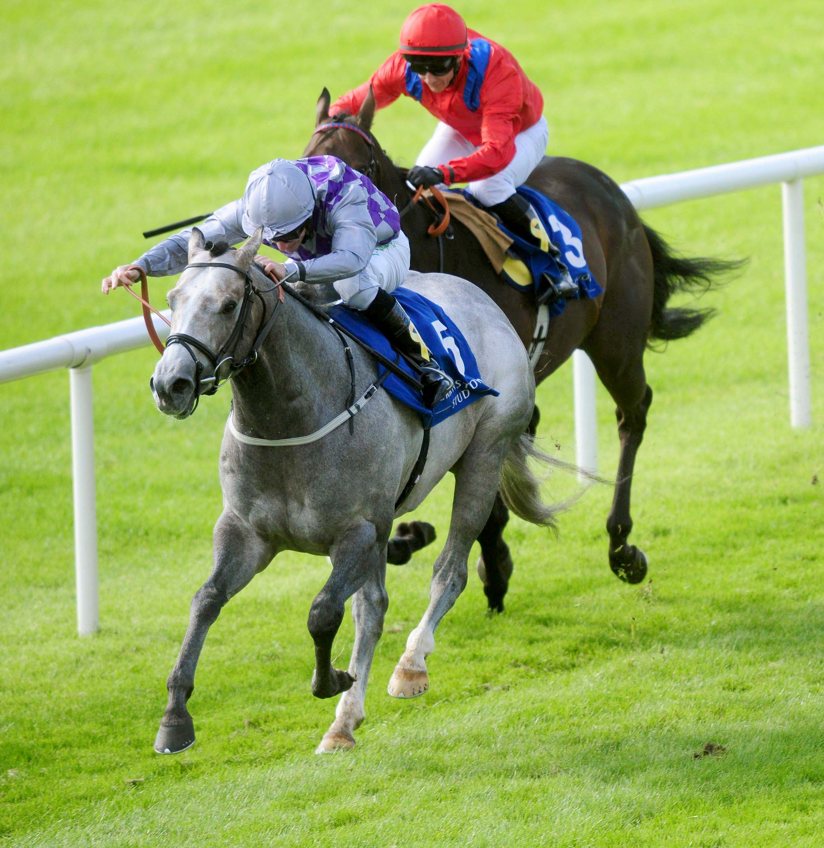 DERRINSTOWN FLYING FIVE (GR1) - Havana Grey, le doublé inoubliable de Karl Burke