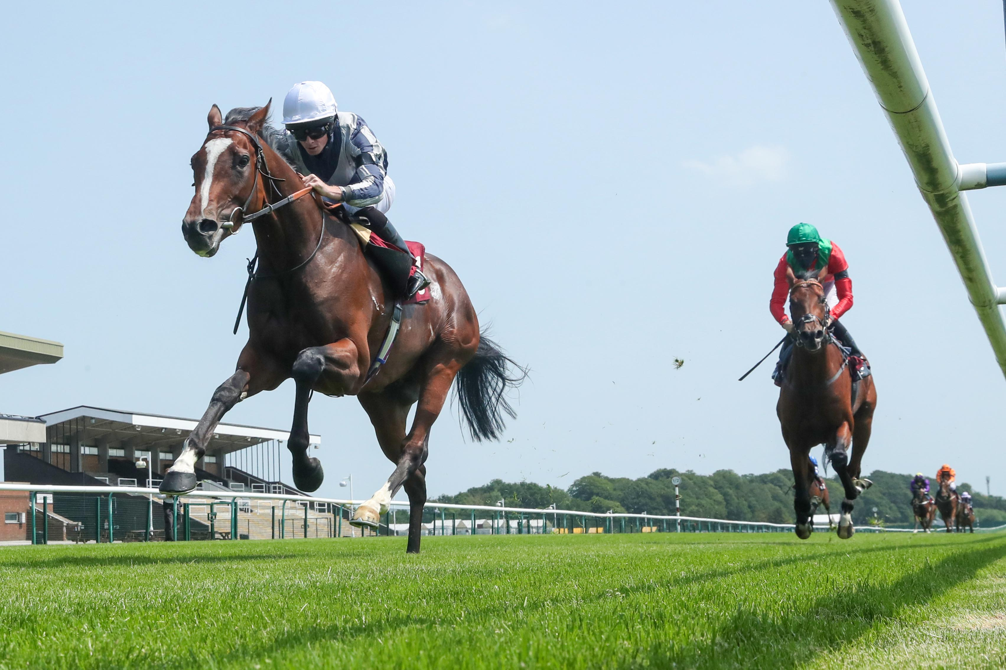 Dante Stakes (Gr2) : Highest Ground vise plus haut