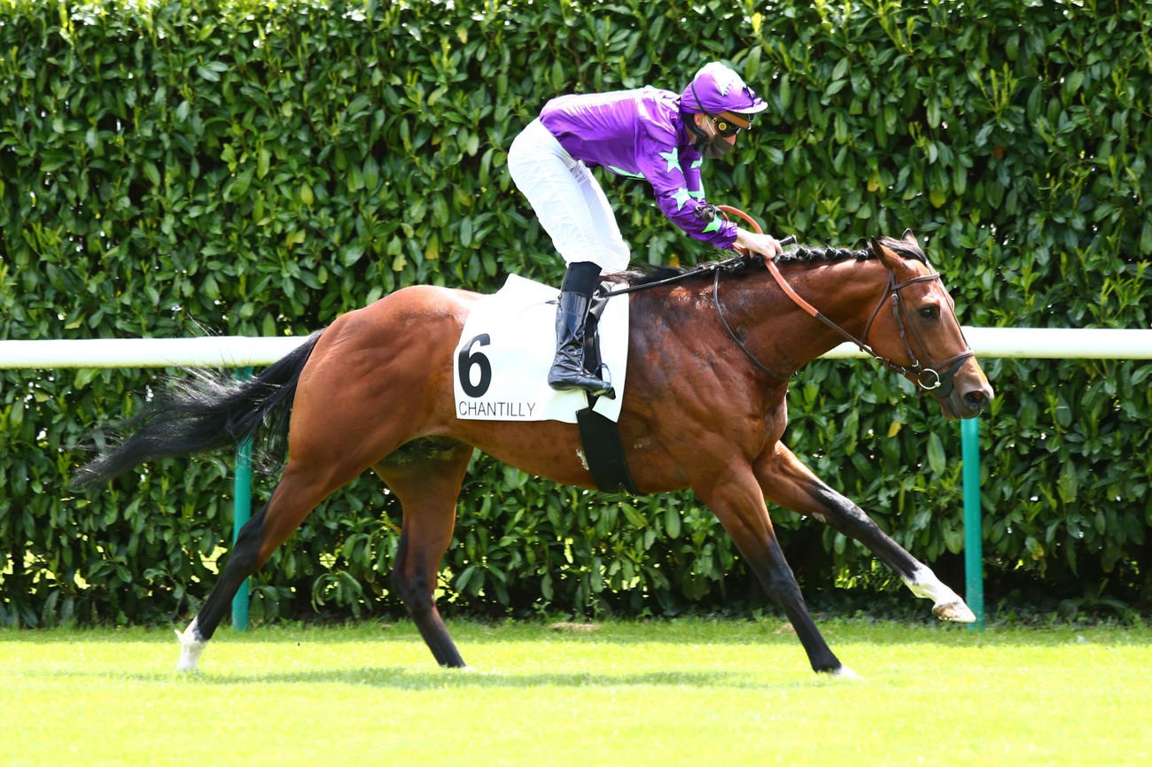 Hurricane Ivor rejoint l'effectif de William Haggas