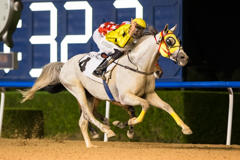 BANI YAS (Gr2 PA): JAYIDE AL BORAQ RECORDS AN HISTORIC WIN