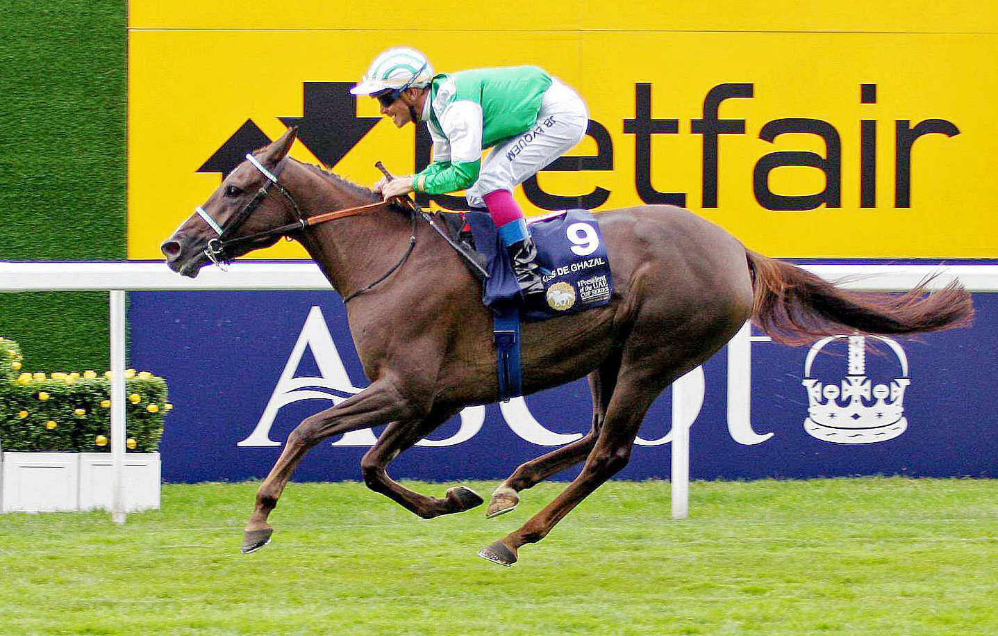 ARABIAN RACING RETURNS TO ASCOT IN 2020 WITH A NEW RACE SPONSORED BY SHADWELL STUD