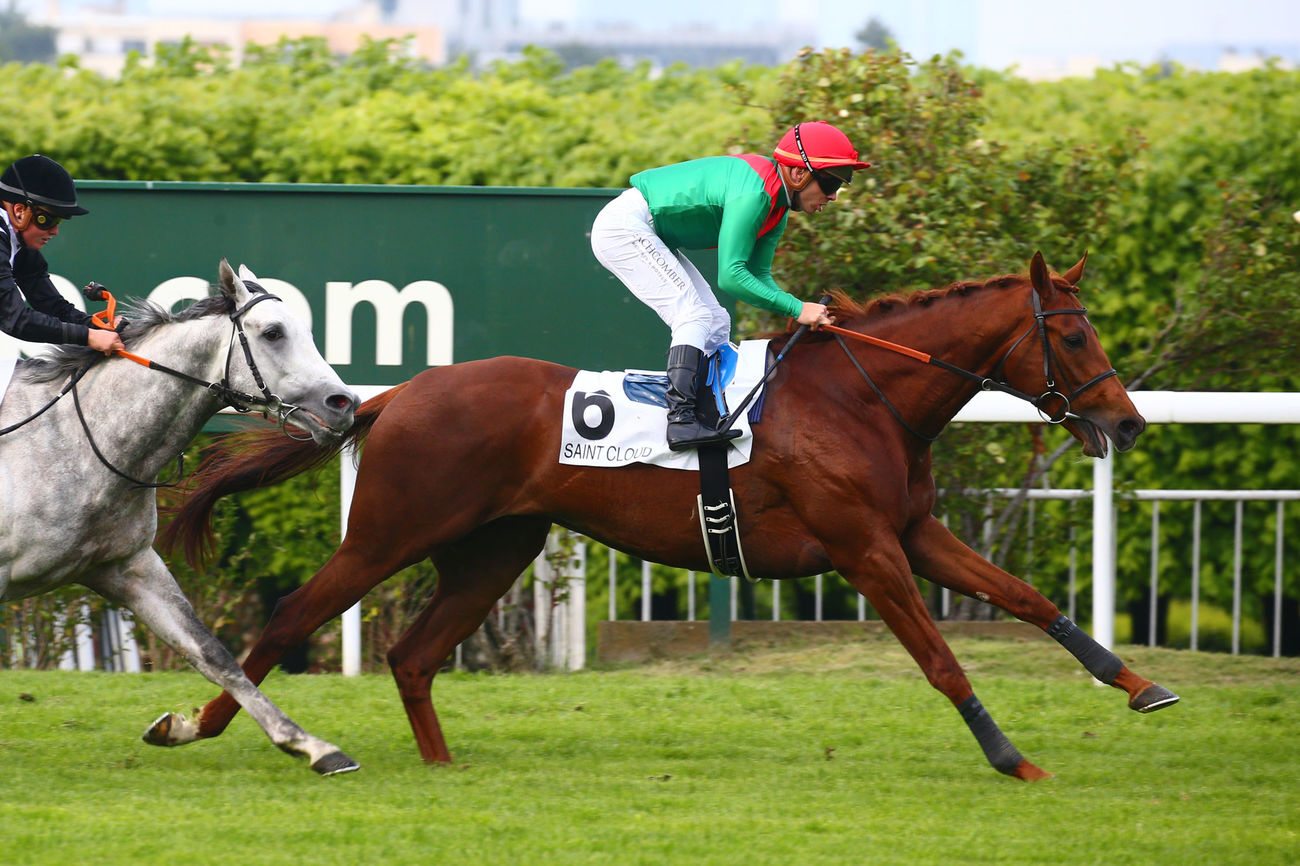 PRIX MIEUXCE (CLASSE 2) - Le rush final de Kingstar