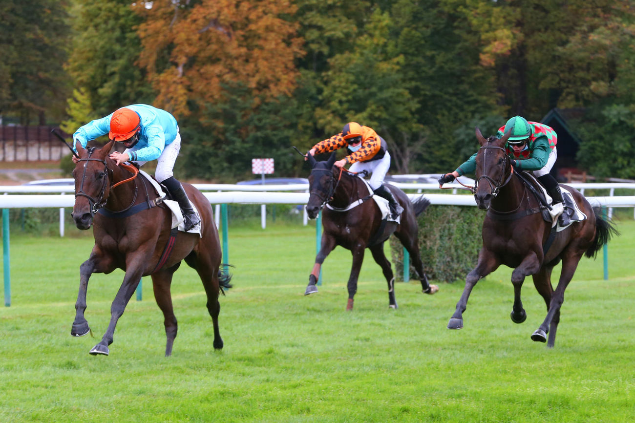 Prix Jumna (Haies) : Kaik All remet la casaque Montesson en avant