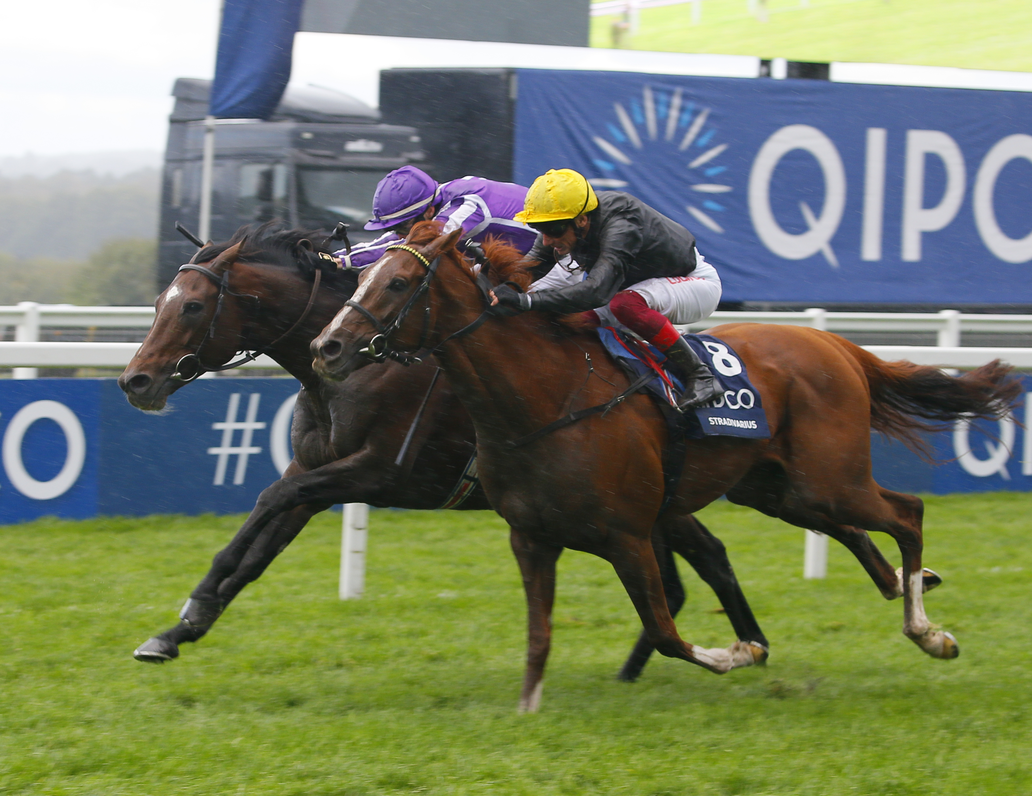 QIPCO BRITISH CHAMPIONS LONG DISTANCE CUP (Gr2) - Les stayers, ces héros !