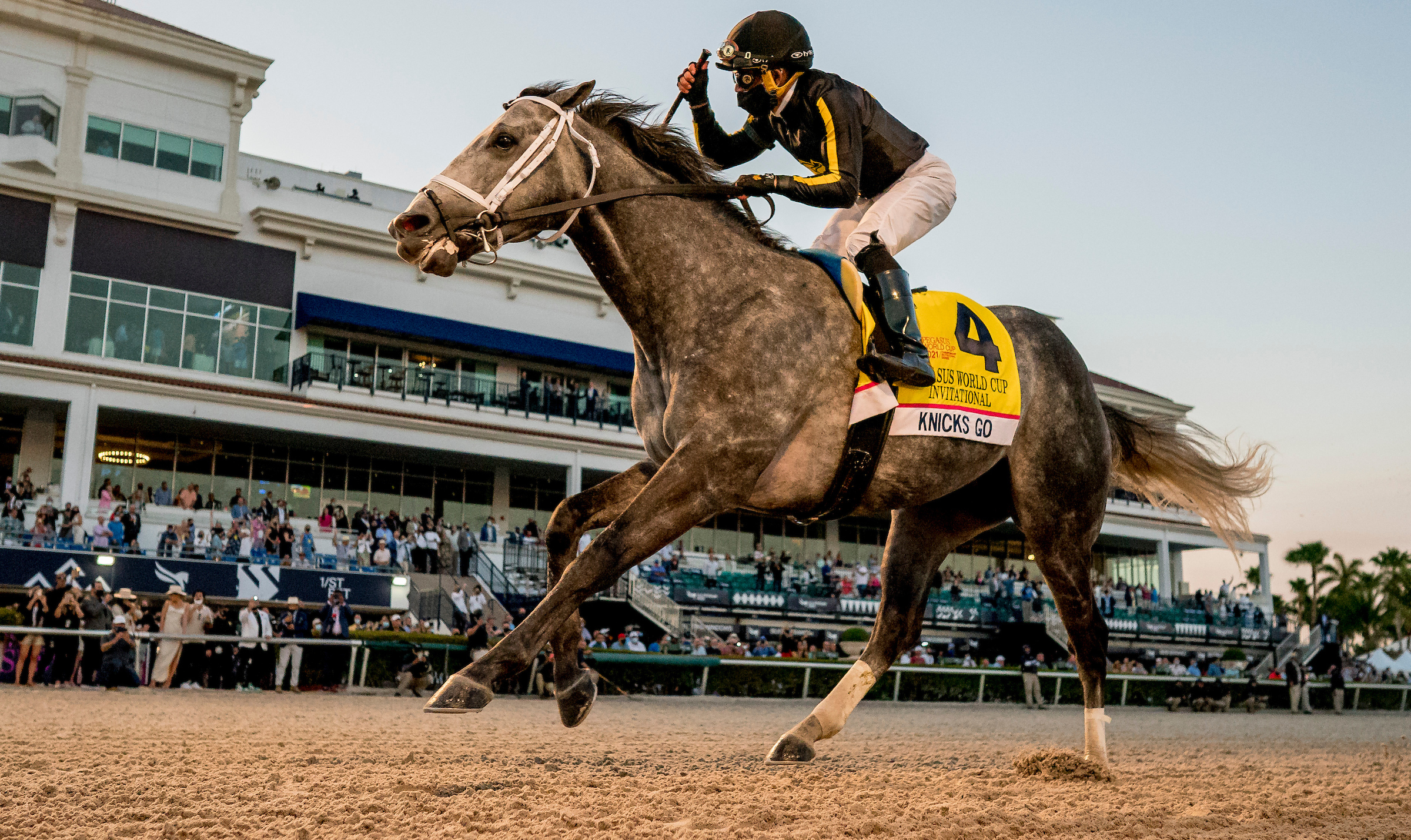 Pegasus World Cup (Gr1) : Knicks Go par K.O.