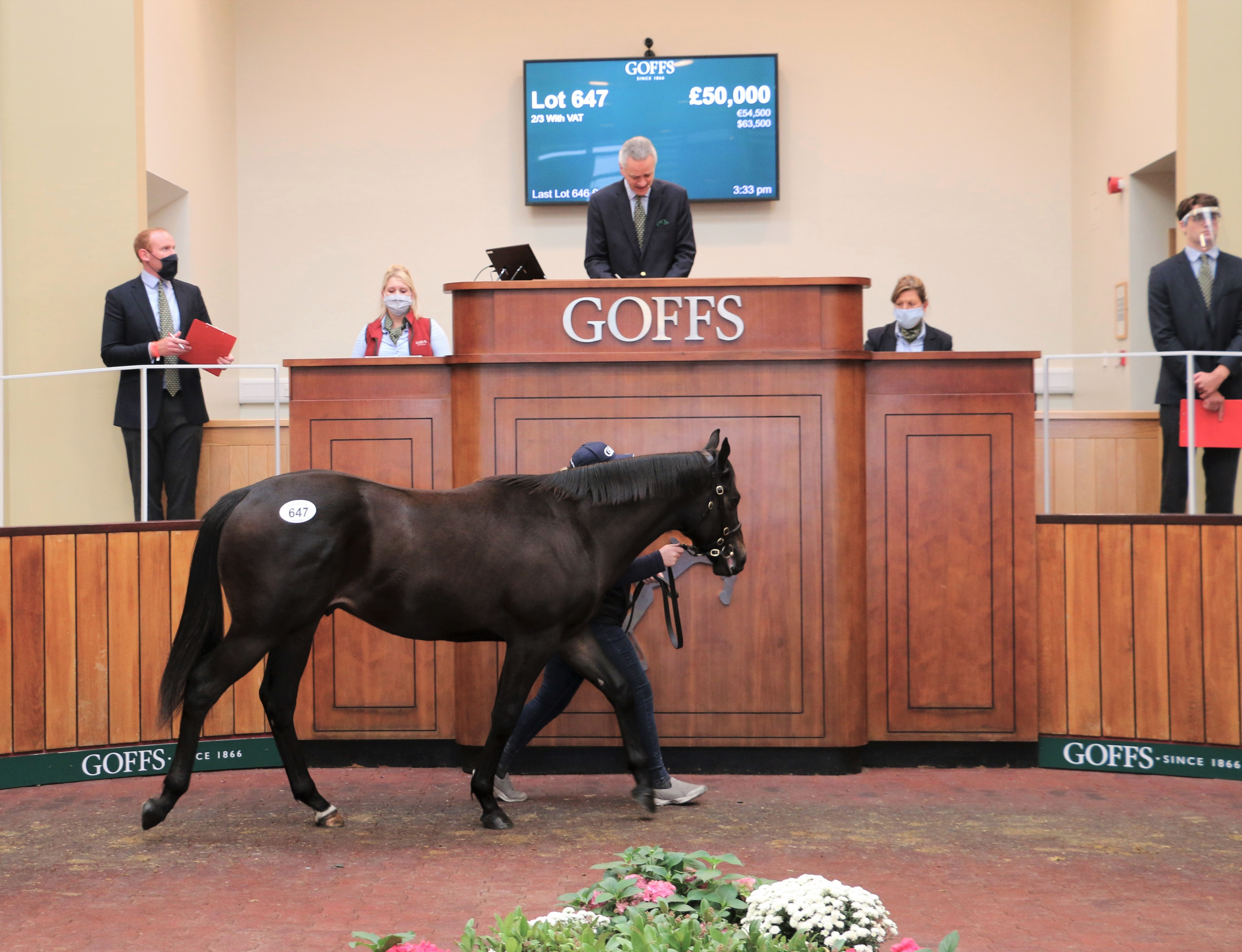 GOFFS SPORTSMAN'S SALE :  le top price pour un Footstepsinthesand