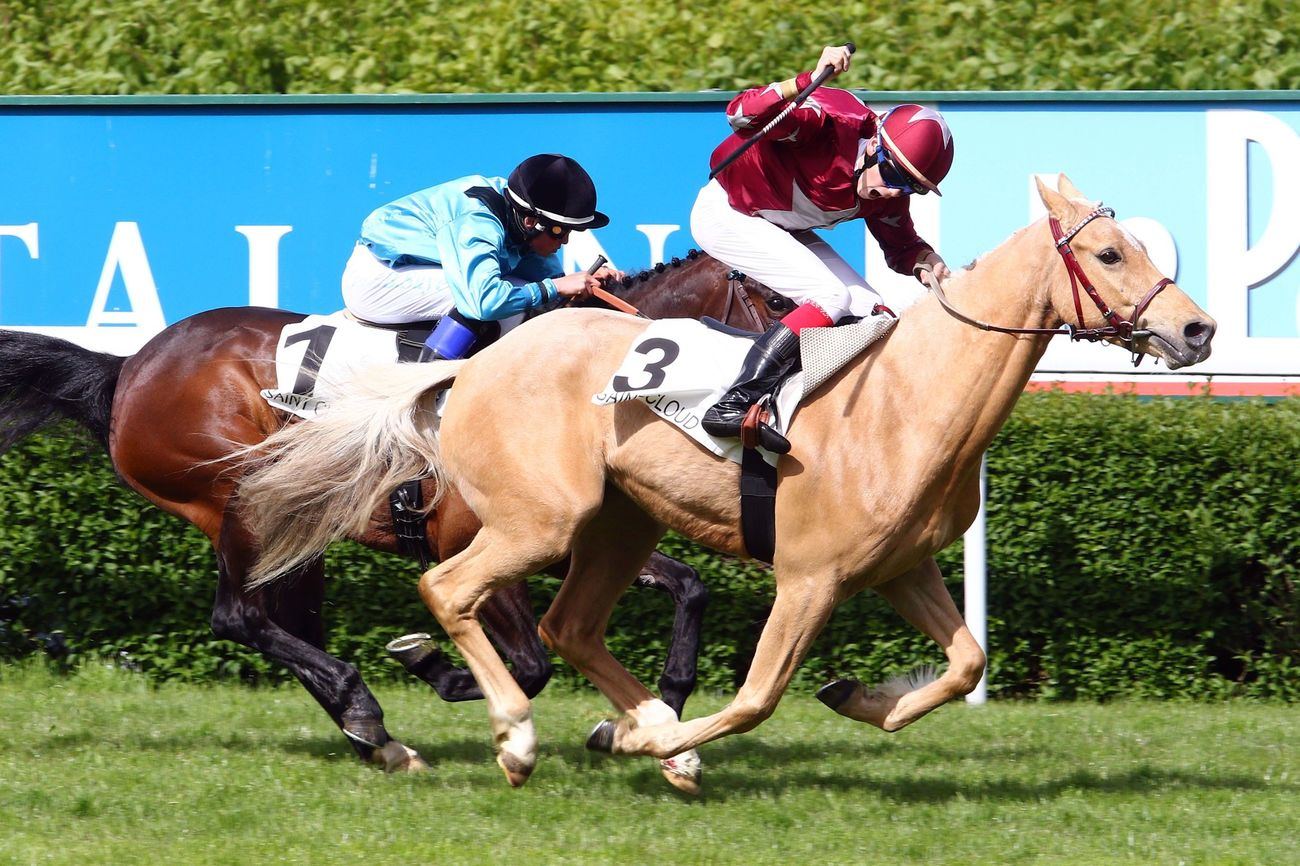 Deauville, capitale des courses de poneys le temps d'un week-end
