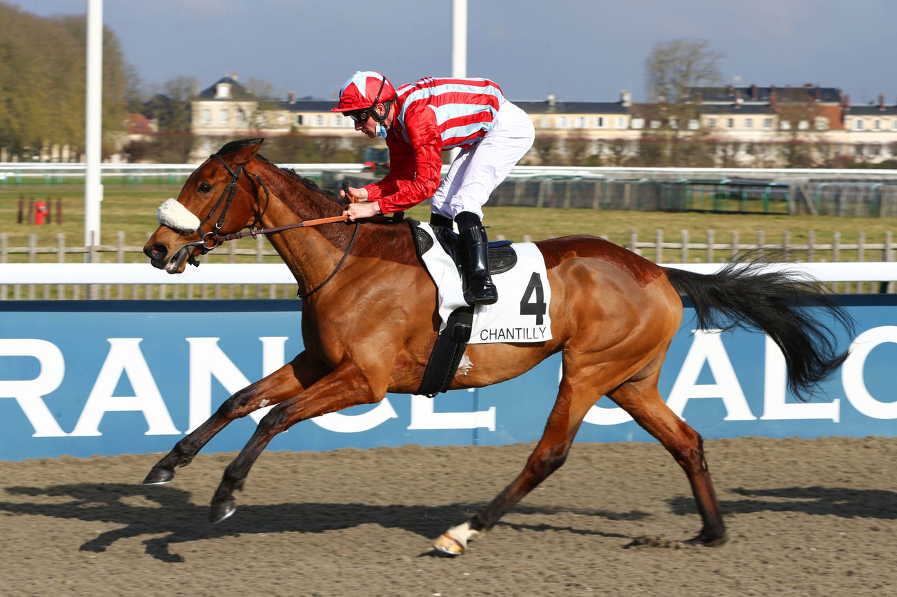 Prix du Rond-Point des Aigles (Classe 3) : Light in the Dark, en future bonne stayeuse