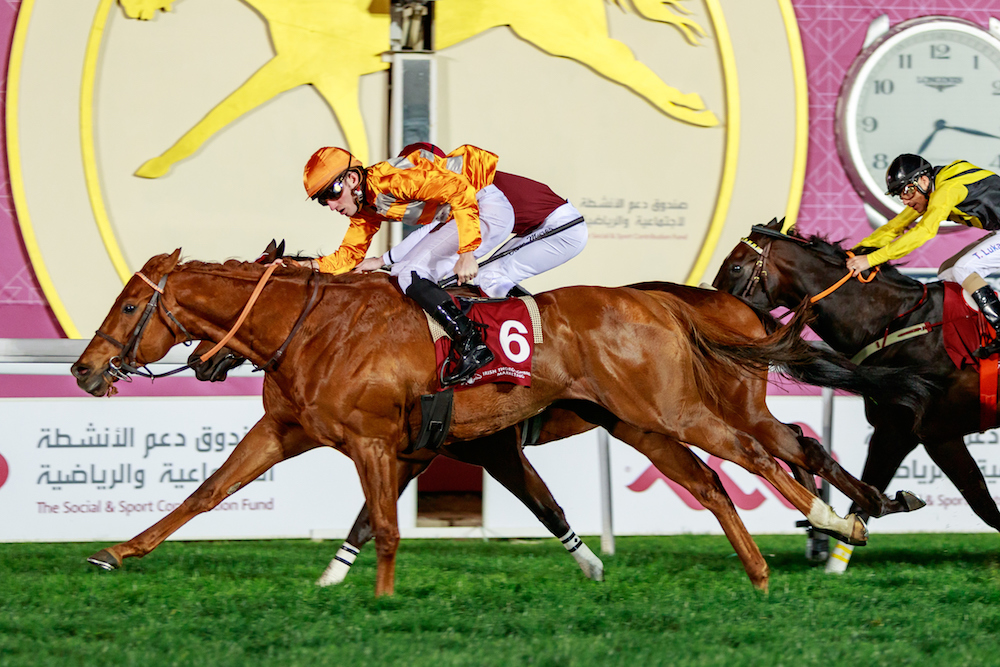 IRISH THOROUGHBRED MARKETING CUP (Gr2 local) - Marianafoot défend son titre sur le mile de Doha