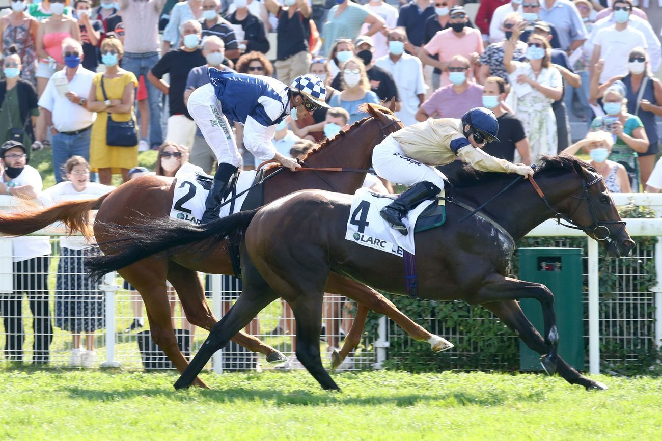 Prix Club Hipico Santiago - Prix Moonlight Cloud (L) : Maystar ou la grande journée d'Hambleton Racing
