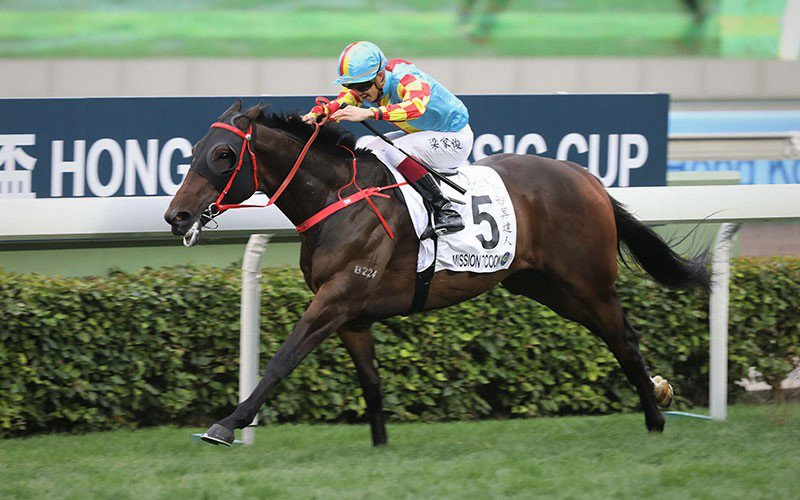 HONG KONG CLASSIC CUP -  Mission Tycoon, un outsider à 92/1