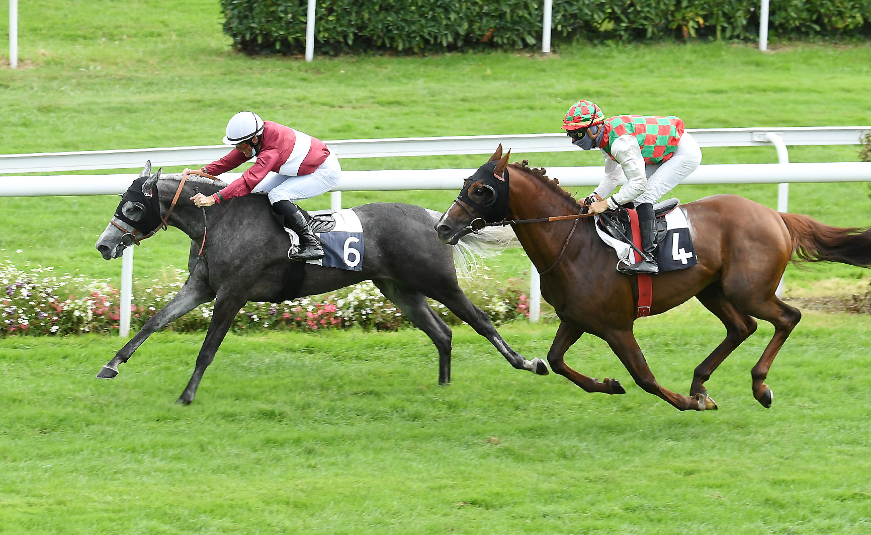 AFAC FRENCH ARABIAN BREEDERS' CHALLENGE SPRINT: NATALMA AL MAURY: IT PAYS TO BE DARING