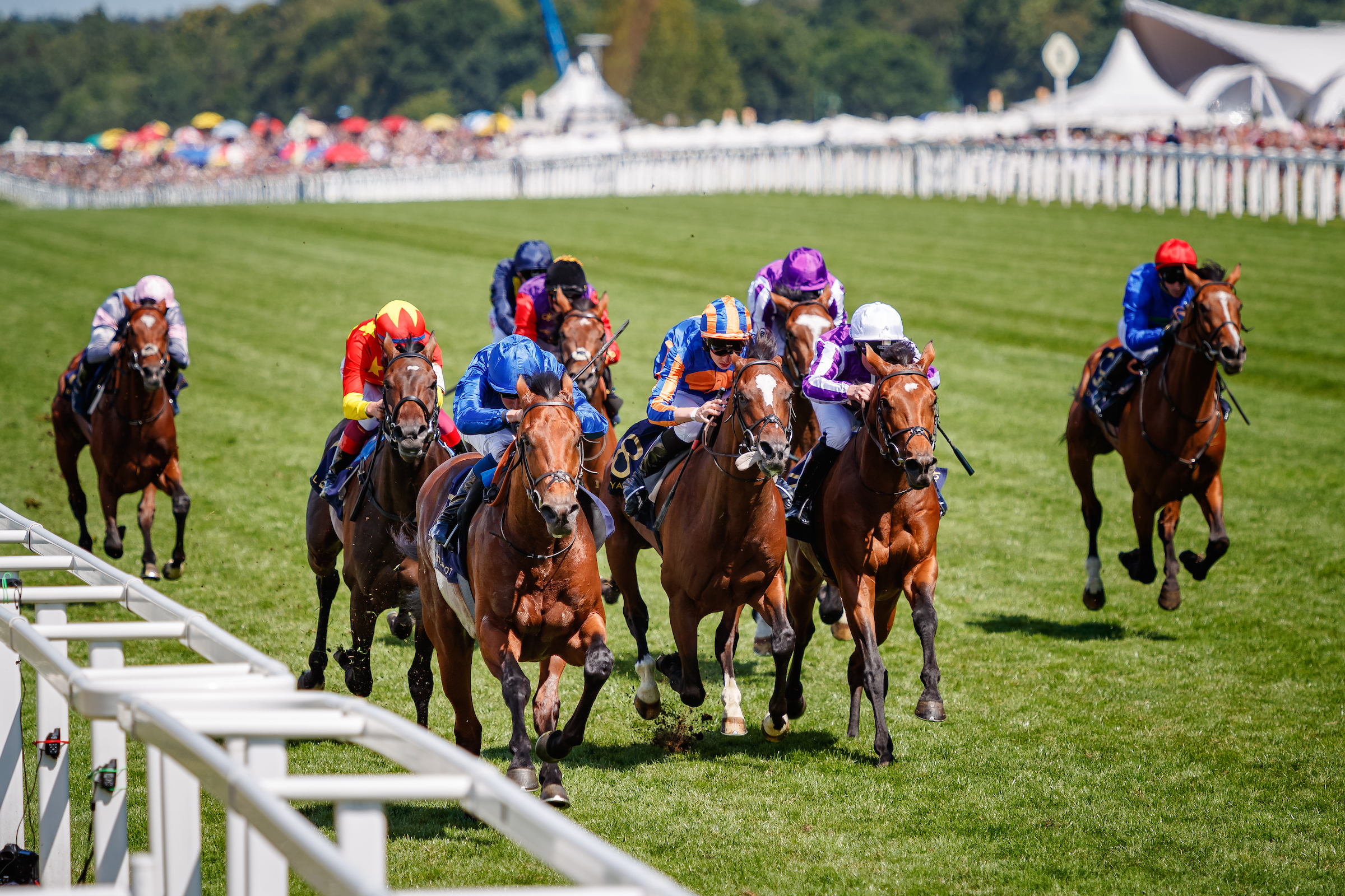 KING EDWARD VII STAKES (GR2) - Old Persian, un autre Derby pour Godolphin