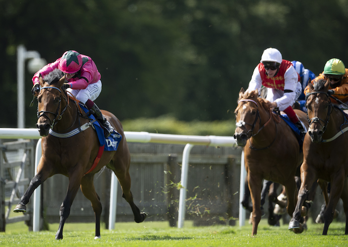 Darley July Cup (Gr1) : Oxted, c'est Fallon mais Cieren