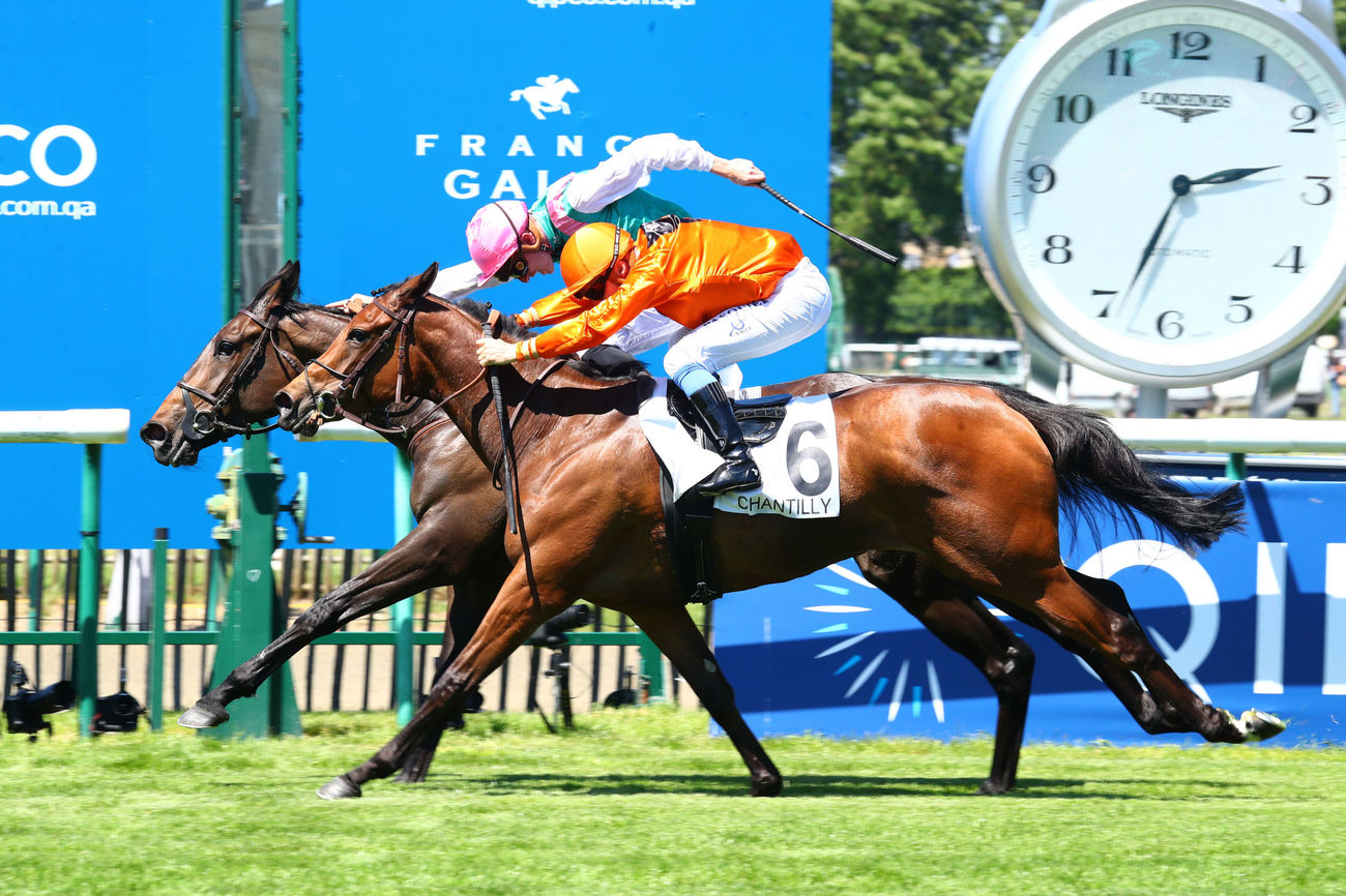 Pure Zen rejoint la London Sale de Goffs