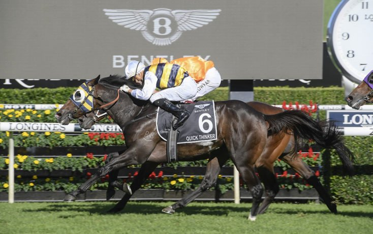 AUSTRALIAN DERBY (Gr1) - Quick Thinker, le All Black d'OTI Racing