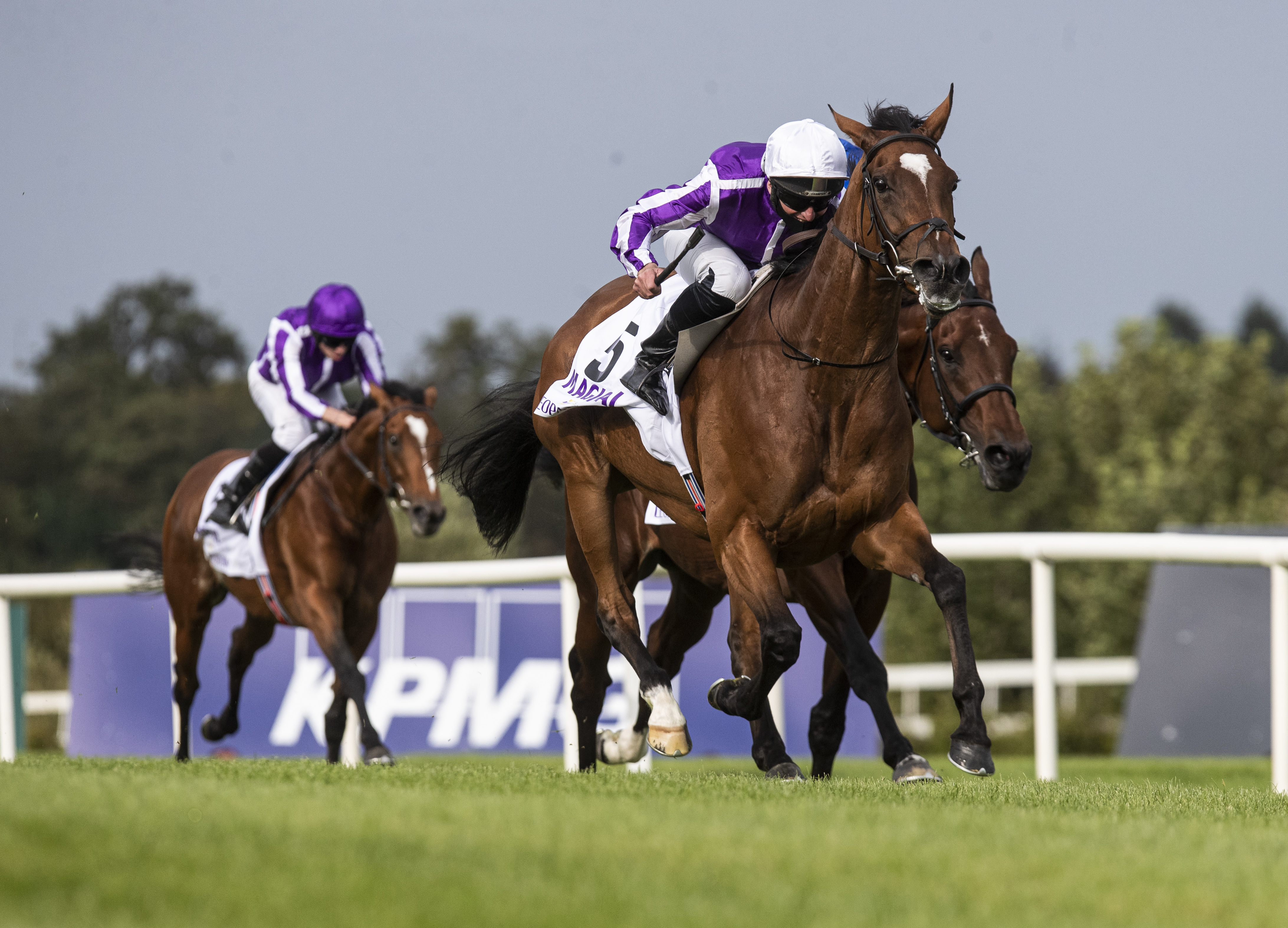Irish Champion Stakes (Gr1) : Magical… et tactical !