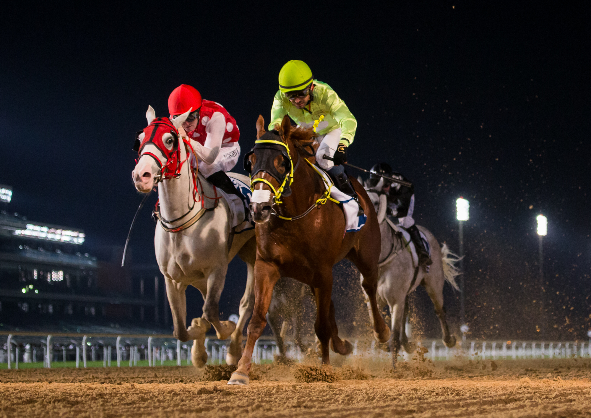 AL MAKTOUM CHALLENGE ROUND 2 - Goshawke shows his Kahayla Classic credentials