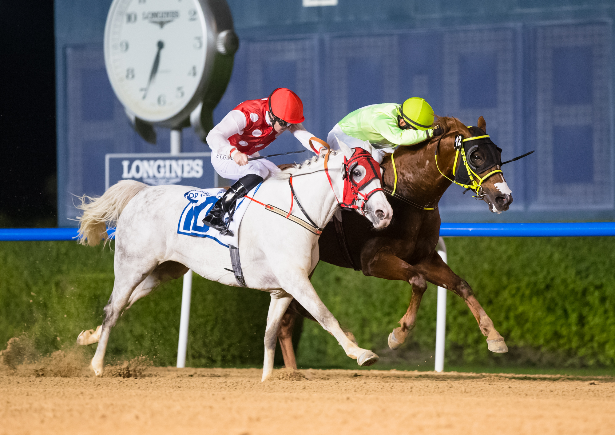 Goshawke shows his Kahayla Classic credentials