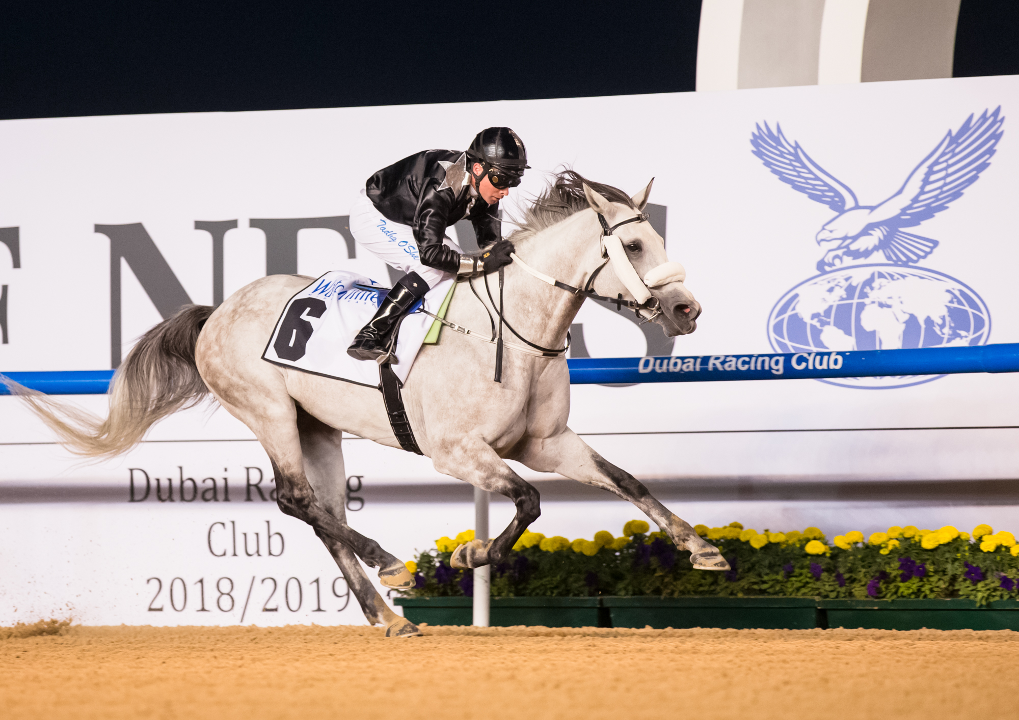MAZRAT AL RUWAYAH - Af Al Sajanjle gives the stallion Af Al Buraq his first Gr2 win