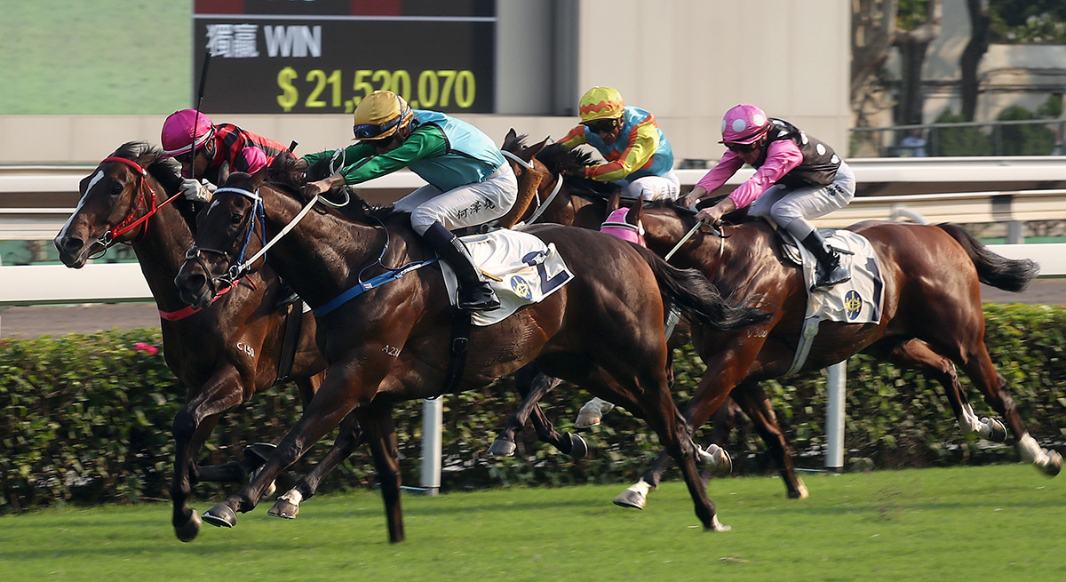 ORIENTAL WATCH SHA TIN TROPHY (GR2 HDCP) - Rise High s'offre Beauty Generation !