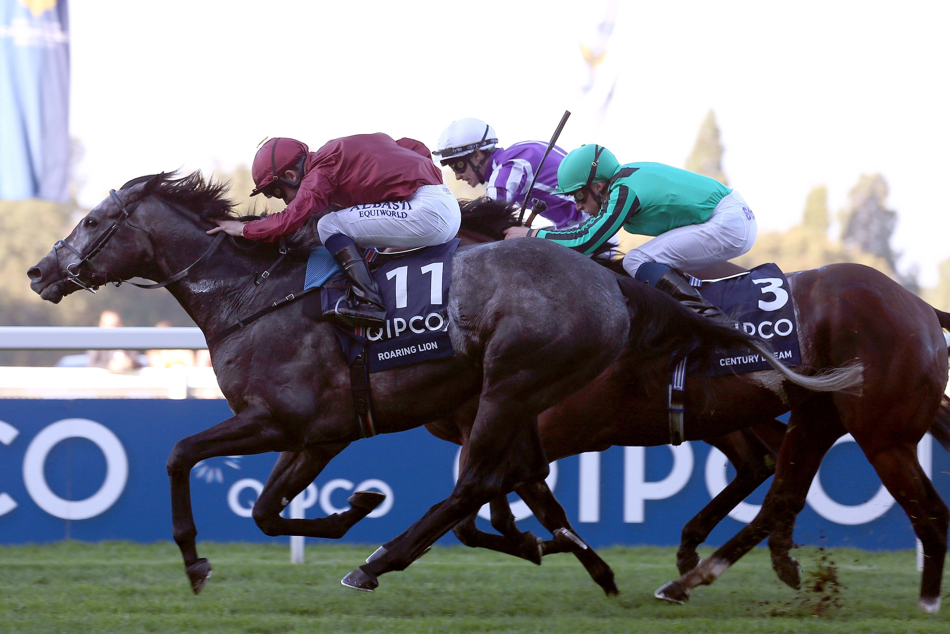 Cartier Awards : Roaring Lion devance Enable à la photo