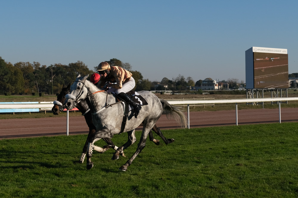 Grand Steeple-Chase de Bordeaux (L) : Rootster s'offre So French