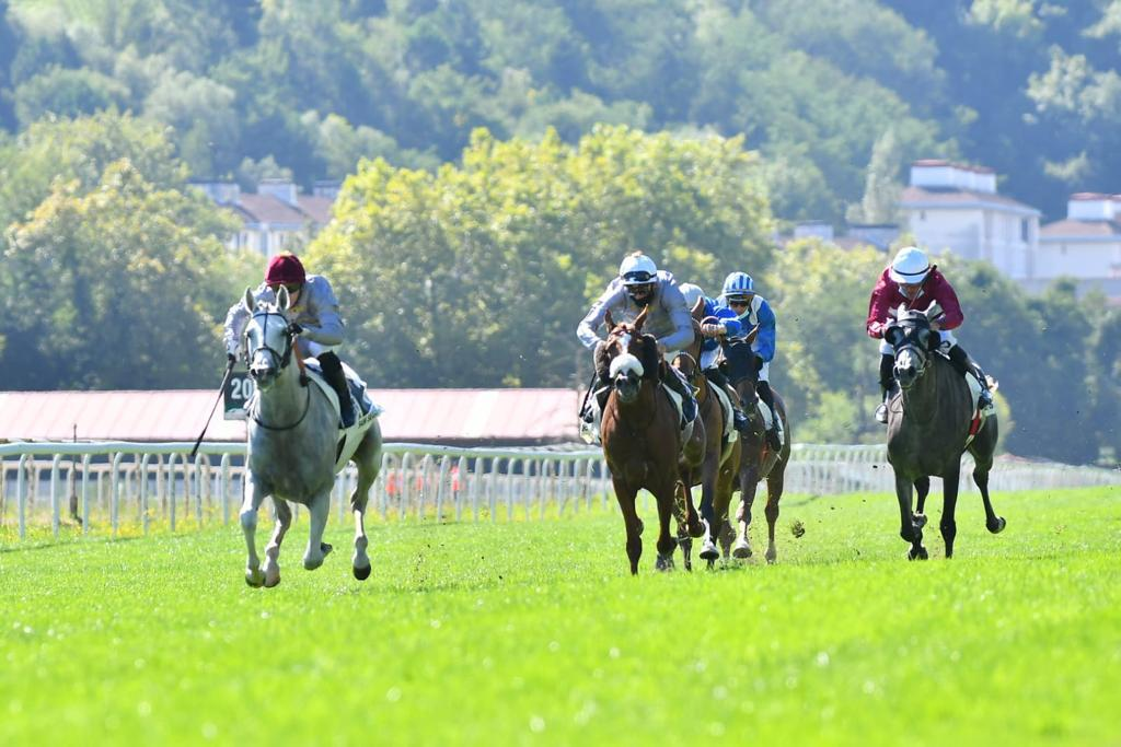 Shadad regains winning form