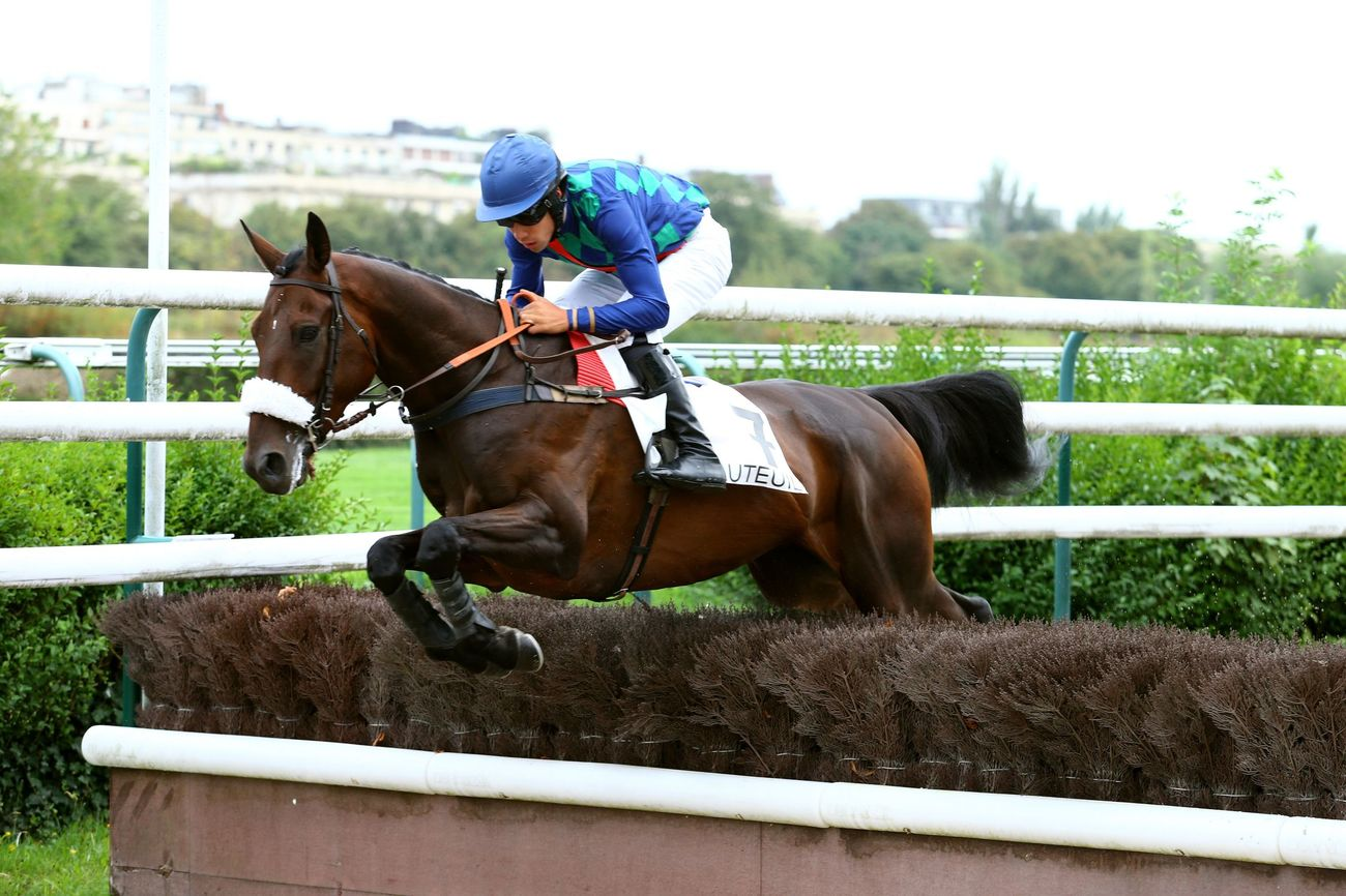 UNIBET INTERNATIONAL HURDLE (Gr2) - Un grand favori… et une grande attraction !