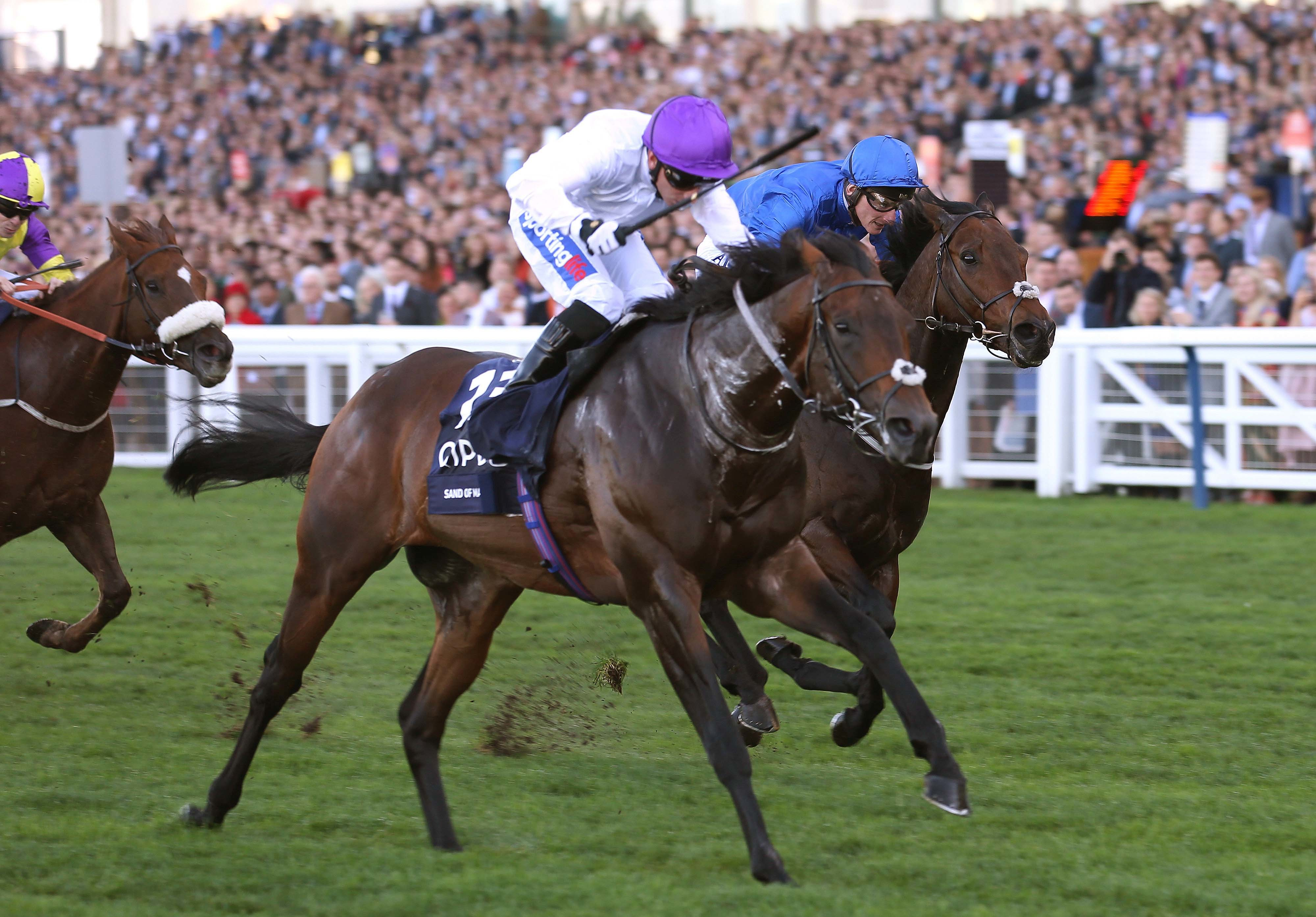 "QIPCO BRITISH CHAMPIONS SPRINT STAKES (GR1) - L'exploit du ""FR"" Sands of Mali"