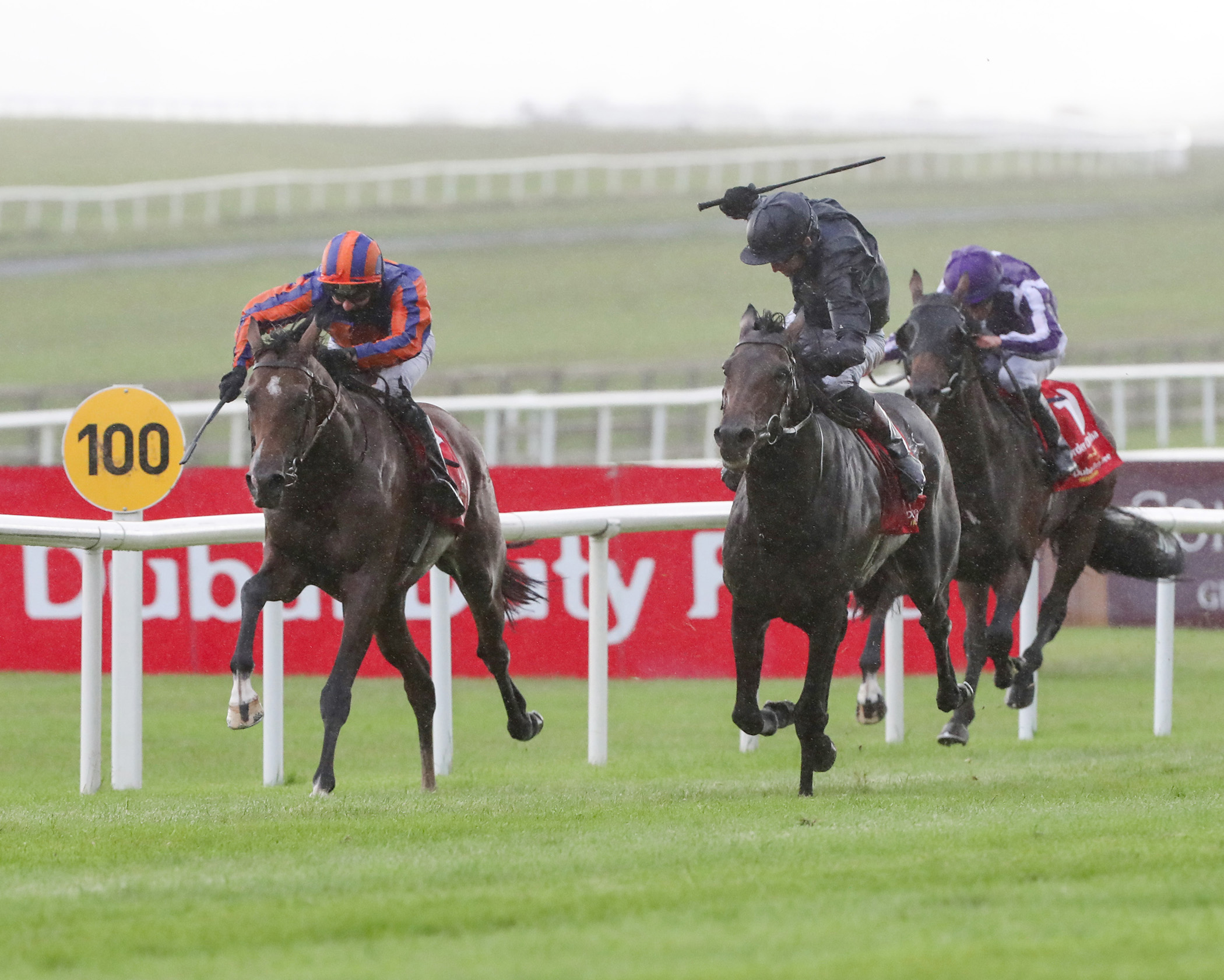 Irish Derby (Gr1) : sur la route d'Epsom