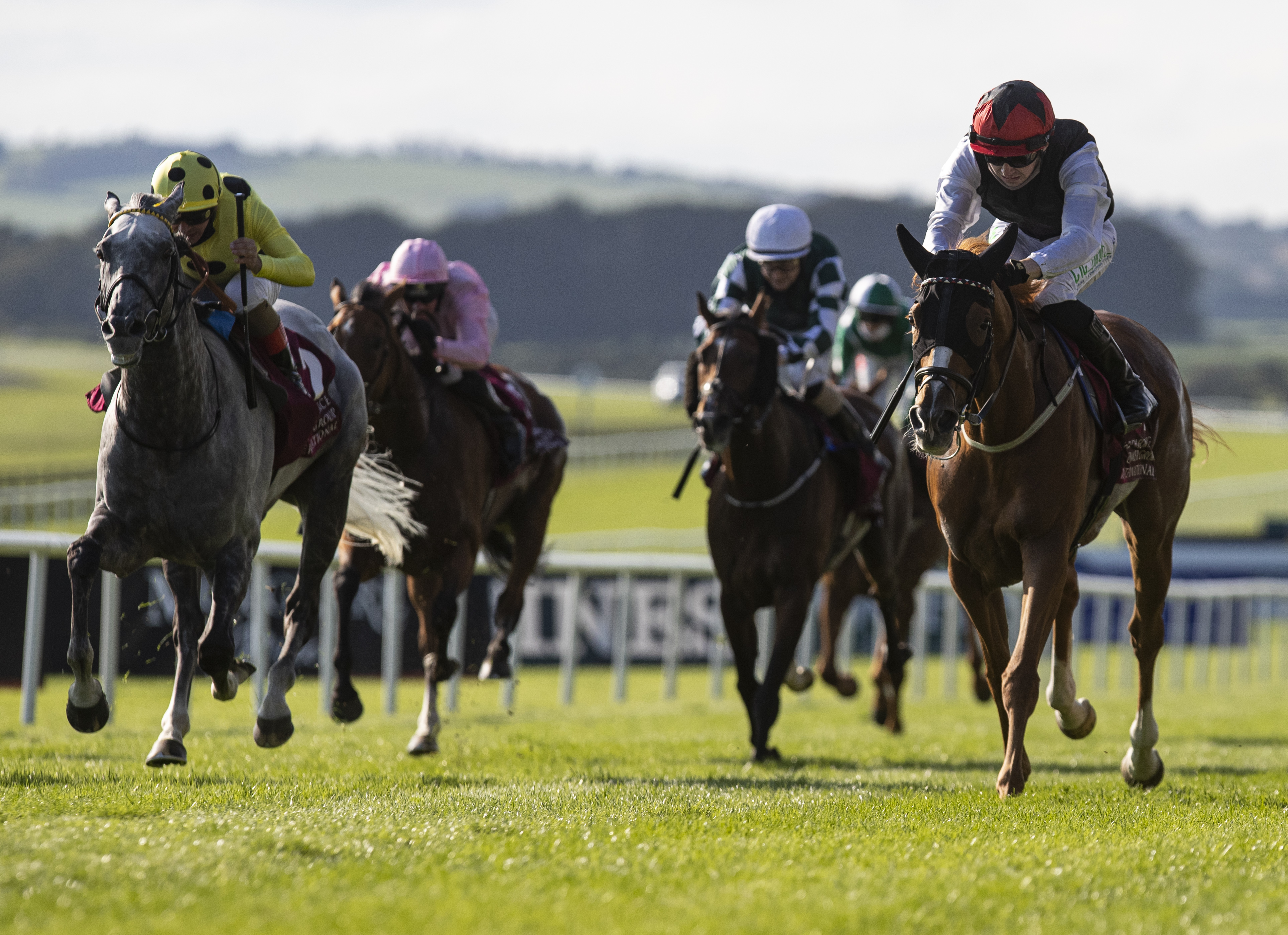 Irish St Leger (Gr1) : Search for a Song, dans une journée very Weld