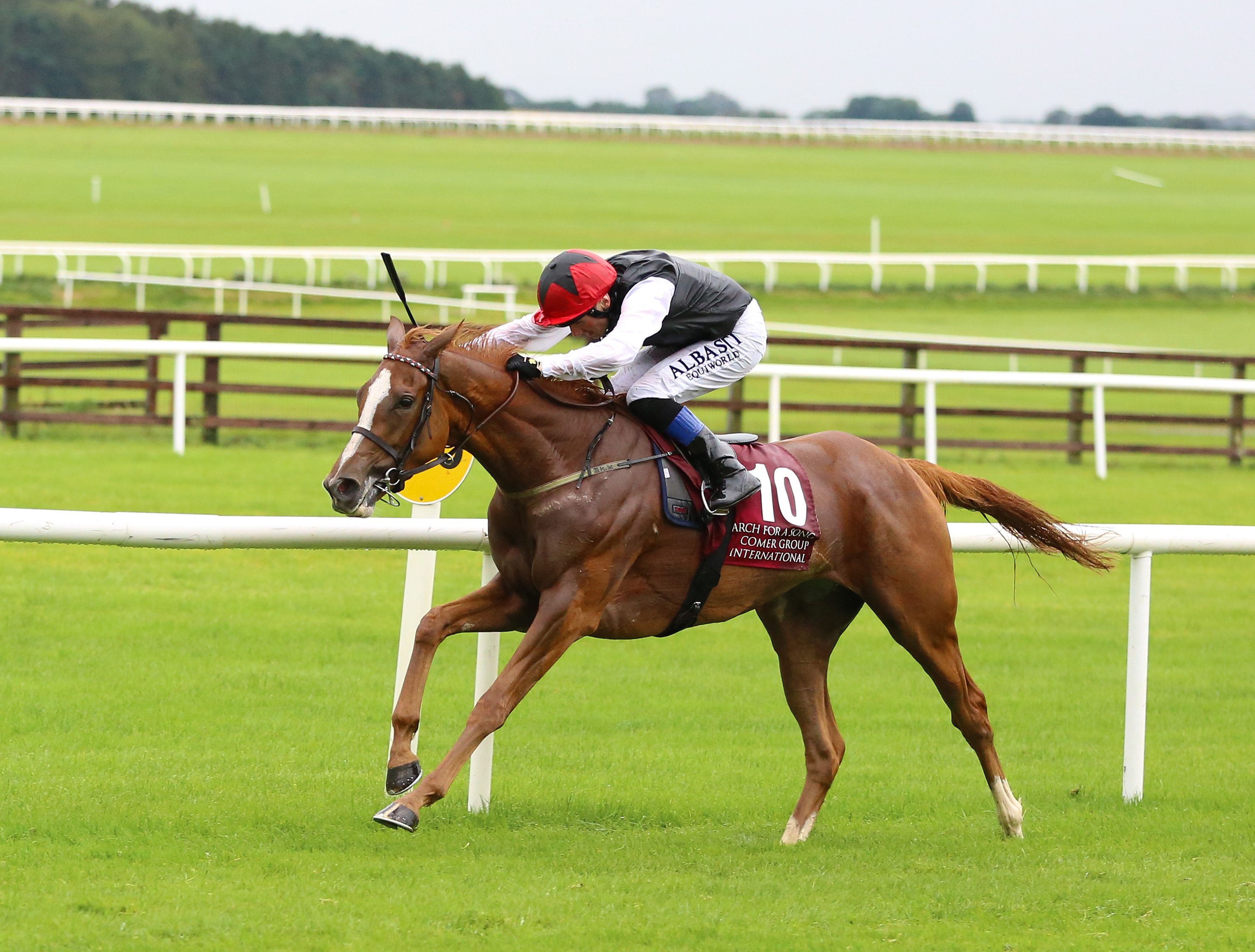 IRISH ST LEGER (GR1) - Search for a Song, le nouveau tube de Weld