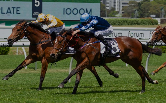 GOLDEN SLIPPER STAKES (GR1) - See you Soon, une Siyouni pour l'histoire