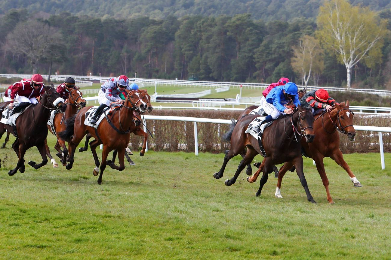 Prix Jean Gillois (Maiden) : Serpent's Tooth, tenace et perfectible