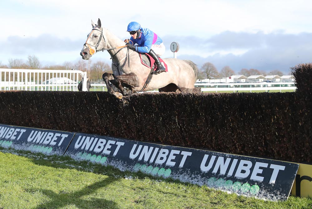Novices' Chase (Gr2) : Silver Hallmark trouve son Groupe en steeple