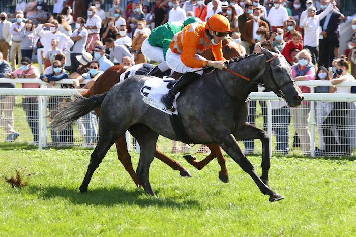 Longines Hong Kong International Races : Skalleti et Royal Julius ont leur ticket