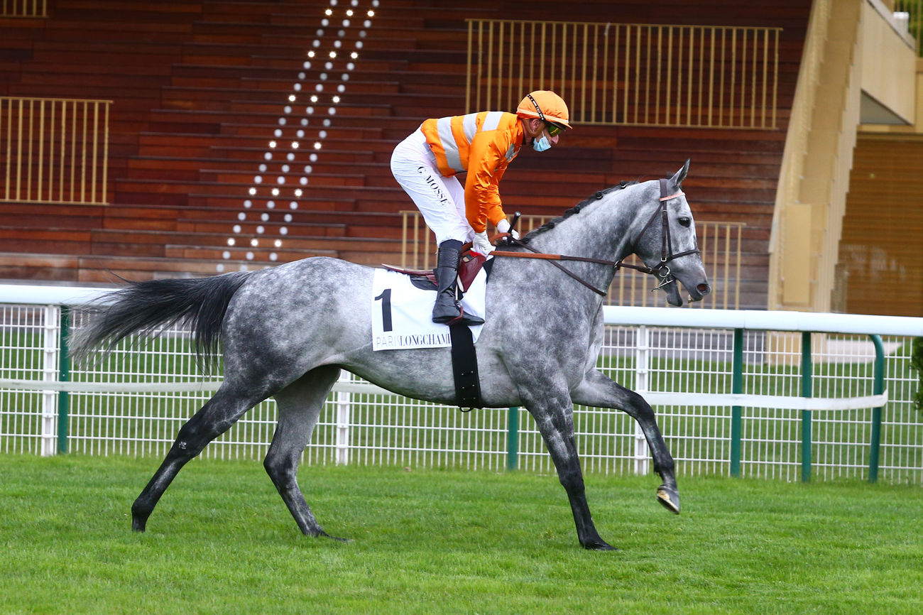 Longines World's Best Racehorse Rankings : Skalleti à 120, l'australien Nature Strip en tête